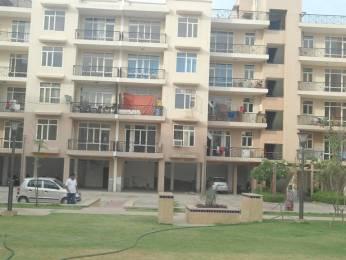 1600 sqft, 3 bhk Apartment in Omaxe City Homes Sector 51 Bhiwadi, Bhiwadi at Rs. 30.1000 Lacs