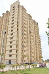 460 sqft, 1 bhk Apartment in Avalon Homes Sector 22 Bhiwadi, Bhiwadi at Rs. 8.0000 Lacs