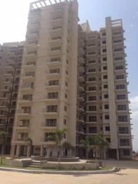 1300 sqft, 2 bhk Apartment in Avalon Rangoli Sector 24 Dharuhera, Dharuhera at Rs. 26.5000 Lacs