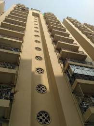 550 sqft, 1 bhk Apartment in Raison Saffron Homes Sector 22 Bhiwadi, Bhiwadi at Rs. 15.4000 Lacs