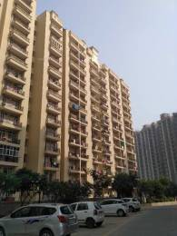 800 sqft, 2 bhk Apartment in Raison Saffron Homes Sector 22 Bhiwadi, Bhiwadi at Rs. 22.0000 Lacs
