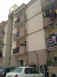 650 sqft, 1 bhk Apartment in Trehan Hill View Garden Phase1 and Phase2 Sector 39 Bhiwadi, Bhiwadi at Rs. 11.2000 Lacs