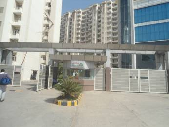 1250 sqft, 2 bhk Apartment in Avalon Gardens Sector 22 Bhiwadi, Bhiwadi at Rs. 29.0000 Lacs