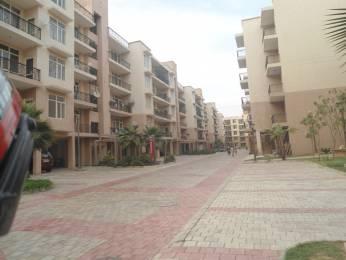 1258 sqft, 2 bhk Apartment in Omaxe City Homes Sector 51 Bhiwadi, Bhiwadi at Rs. 24.7000 Lacs