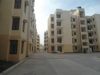 485 sqft, 1 bhk Apartment in Krish City Phase 2 Sector 93 Bhiwadi, Bhiwadi at Rs. 10.8000 Lacs
