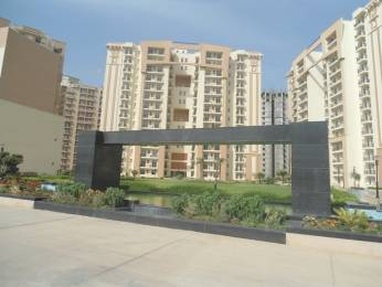 1234 sqft, 2 bhk Apartment in Nimai Greens Sector 22 Bhiwadi, Bhiwadi at Rs. 34.0000 Lacs