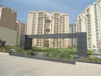 1620 sqft, 3 bhk Apartment in Nimai Greens Sector 22 Bhiwadi, Bhiwadi at Rs. 42.5000 Lacs