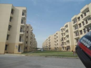 605 sqft, 1 bhk Apartment in Krish City Phase 2 Sector 93 Bhiwadi, Bhiwadi at Rs. 12.5000 Lacs