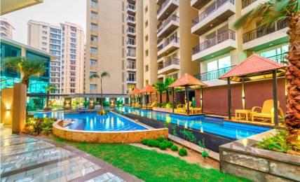 1600 sqft, 3 bhk Apartment in Anukampa Platina Sanganer, Jaipur at Rs. 53.1100 Lacs