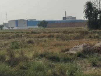 900 sqft, Plot in Builder JMRT Properties Raja Puri, Delhi at Rs. 6.5000 Lacs