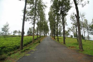 3000 sqft, Plot in Builder prtistine valley Bengalmattam, Ooty at Rs. 10.5000 Lacs