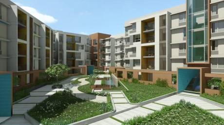1545 sqft, 3 bhk Apartment in Casagrand Royce KR Puram, Bangalore at Rs. 70.3000 Lacs