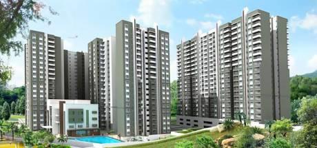 2253 sqft, 4 bhk Apartment in Sobha HRC Pristine Jakkur, Bangalore at Rs. 1.6200 Cr