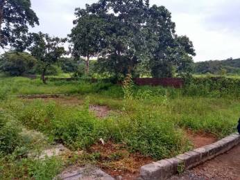 3520 sqft, Plot in Builder Project Sancoale, Goa at Rs. 50.0000 Lacs