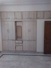 1650 sqft, 3 bhk IndependentHouse in Builder Project sector 31 noida, Noida at Rs. 20000