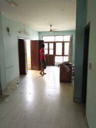 1650 sqft, 3 bhk BuilderFloor in Builder Project Sector 31, Noida at Rs. 18000