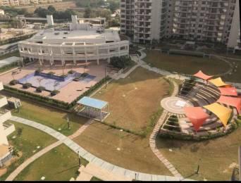 250 sqft, 1 bhk Apartment in Pioneer Pioneer Park PH 1 Sector 61, Gurgaon at Rs. 11000