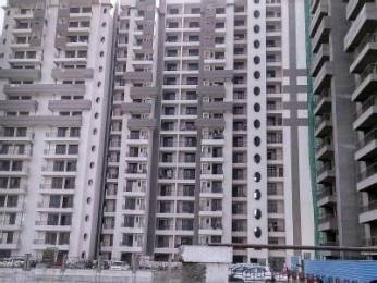 590 sqft, 1 bhk Apartment in Devika Skypers Raj Nagar Extension, Ghaziabad at Rs. 4500