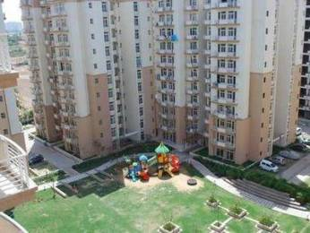 920 sqft, 2 bhk Apartment in Ansal Maple Heights Sector 43, Gurgaon at Rs. 26000