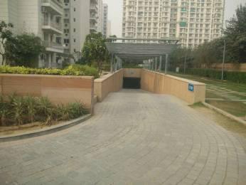 2063 sqft, 3 bhk Apartment in BPTP Park Prime Sector 66, Gurgaon at Rs. 40000