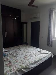1245 sqft, 2 bhk Apartment in TDI Ourania Sector 53, Gurgaon at Rs. 35000
