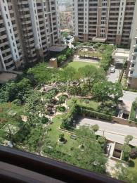 3110 sqft, 4 bhk Apartment in Vipul Belmonte Sector 53, Gurgaon at Rs. 65000
