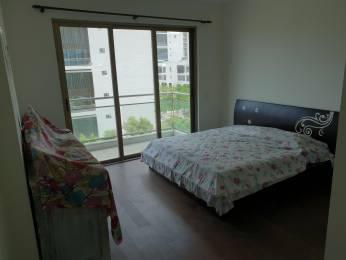 2905 sqft, 4 bhk Apartment in TATA Primanti Sector 72, Gurgaon at Rs. 45000