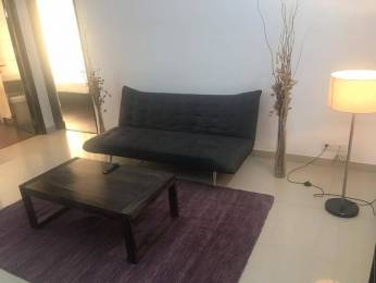 1165 sqft, 2 bhk Apartment in TDI Ourania Sector 53, Gurgaon at Rs. 65000