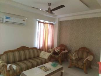 1920 sqft, 3 bhk Apartment in Builder Motia Royal City Ambala Highway, Chandigarh at Rs. 25000