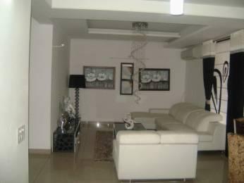 1850 sqft, 3 bhk Apartment in Builder AWHO GHS 79 Sandeep Vihar Sector 20 Panchkula Sector 20 Panchkula, Chandigarh at Rs. 77.0000 Lacs