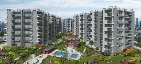 1800 sqft, 3 bhk Apartment in Builder Trishla city Zirakpur Main Zirakpur Road, Chandigarh at Rs. 35.0000 Lacs