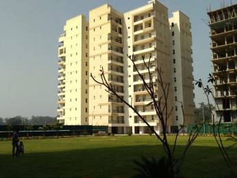 1651 sqft, 3 bhk Apartment in Builder Project Zirakpur punjab, Chandigarh at Rs. 51.3000 Lacs