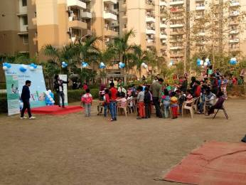1193 sqft, 2 bhk Apartment in Builder stellar jeevan Noida Extn, Noida at Rs. 39.0000 Lacs