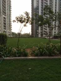1685 sqft, 3 bhk Apartment in DLF Group Capital Greens Phase I Moti Nagar, Delhi at Rs. 29000