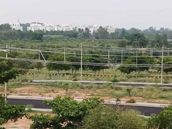 1500 sqft, Plot in Srinivasa Green Acres Phase 2 Marsur, Bangalore at Rs. 24.7500 Lacs