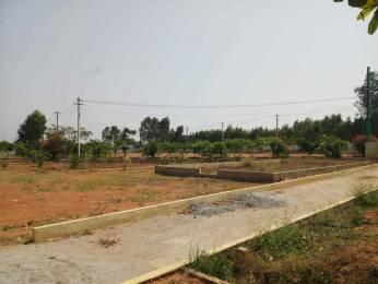 1500 sqft, Plot in Srinivasa Spring Hills Anekal City, Bangalore at Rs. 19.5000 Lacs