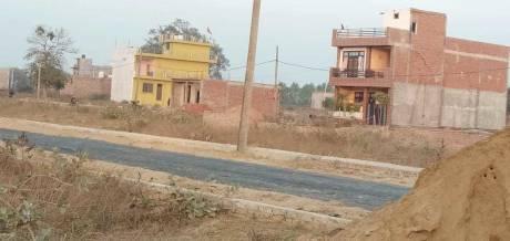 1000 sqft, Plot in Builder amity green city Gomti Nagar Vistar, Lucknow at Rs. 13.5100 Lacs