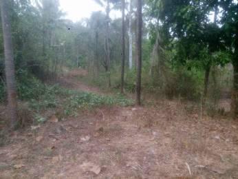 10890 sqft, Plot in Builder Gurupura Kaikamba Moodbidri, Mangalore at Rs. 45.0000 Lacs