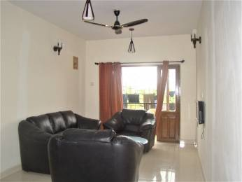 1023 sqft, 1 bhk Apartment in Builder Models Exotica St Inez, Goa at Rs. 85.0000 Lacs