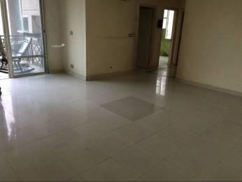 1555 sqft, 3 bhk Apartment in DLF Regency Park 1 DLF CITY PHASE IV, Gurgaon at Rs. 40000