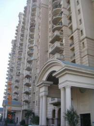 3000 sqft, 4 bhk Apartment in DLF Windsor Court Sector 27, Gurgaon at Rs. 75000