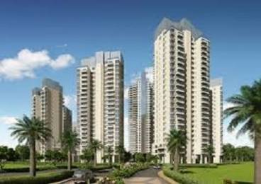 2400 sqft, 3 bhk Apartment in Ireo The Grand Arch Sector 58, Gurgaon at Rs. 55000