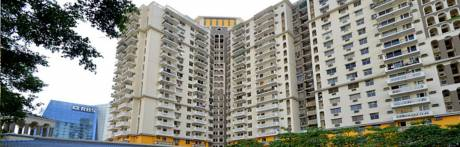 2250 sqft, 4 bhk Apartment in DLF Belvedere Tower Sector 24, Gurgaon at Rs. 55000