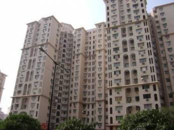 1400 sqft, 3 bhk Apartment in DLF Wellington Estate Sector 53, Gurgaon at Rs. 40000