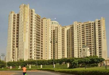 3065 sqft, 4 bhk Apartment in DLF The Summit Sector 54, Gurgaon at Rs. 85000