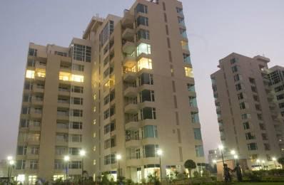 2300 sqft, 3 bhk Apartment in Raheja Atlantis Sector 31, Gurgaon at Rs. 50000