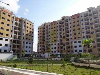716 sqft, 2 bhk Apartment in Green City 3 Jamtha, Nagpur at Rs. 16.1100 Lacs