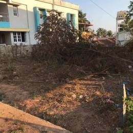 3700 sqft, Plot in Builder Project Bendoor, Mangalore at Rs. 1.8500 Cr