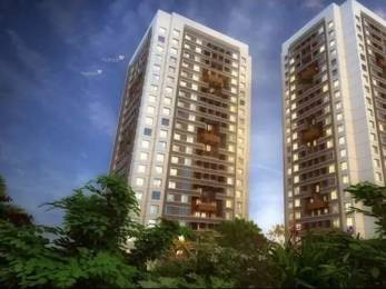 500 sqft, 1 bhk Apartment in Mittal Pebbles High Mont Phase 2 Pairs Hinjewadi, Pune at Rs. 30.0000 Lacs
