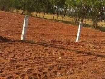 217800 sqft, Plot in Builder Project Tenkasi Ayikudi Road, Tirunelveli at Rs. 2.5000 Cr